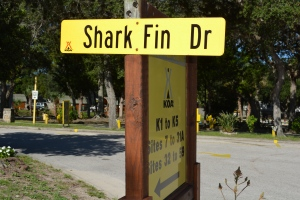Shark Fin Drive at St Augustine KOA
