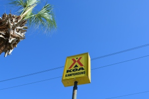 Yellow KOA Sign Against a Blue Sky with a Palm Tree