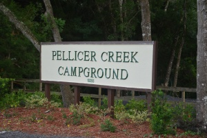 Pellicer Creek Campground Sign